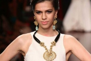 Anand-Shah-IIJW-5-The-Maharani-Diaries-300x200