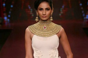 Anand-Shah-IIJW-The-Maharani-Diaries-300x200